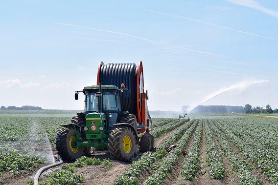 Boerenleven