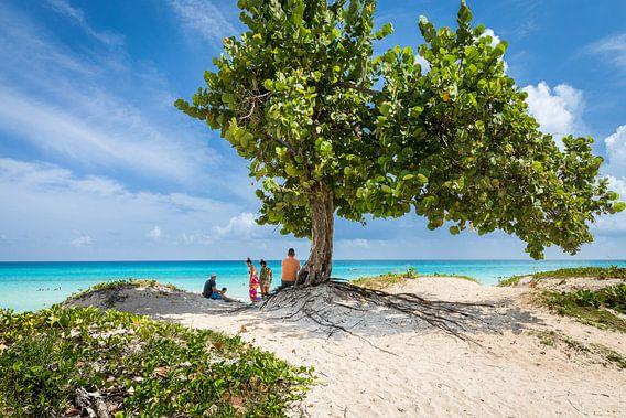 Relax in de Cariben