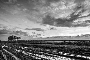 Akker bij Macheren, Noord-Brabant in de winter van Wouter Bos