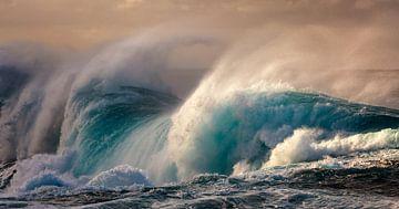 Waves van Reinier Snijders