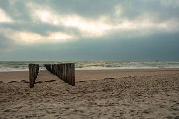 zoutelande strand met paalhoofden van anne droogsma