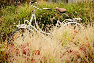 Studenten fiets in herfst beeld. van