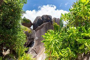 Landschaft auf der Seychellen Insel La Digue