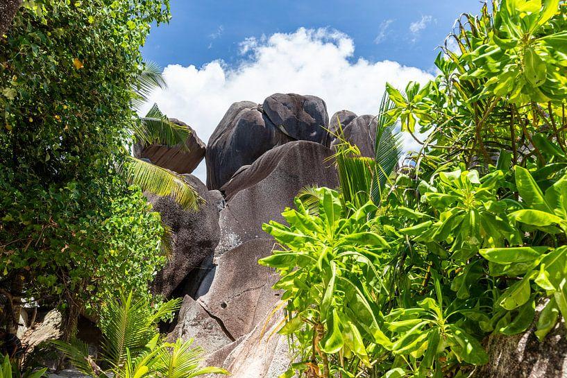 Landschaft auf der Seychellen Insel La Digue von Reiner Conrad