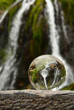 Wasser van zwergl 0611