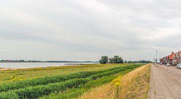 Uiterwaarden Nederlandse rivier Boven Merwede bij Werkendam van Ruud Morijn