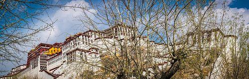 Panorama van het Potala paleis in Lhasa, Tibet