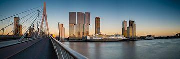 Kop van Zuid met de MS Rotterdam van