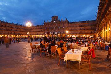 Plaza Mayor mit Rathaus bei Abenddämmerung, Salamanca, Castilla y Leon, Kastilien-Leon, Spanien von Torsten Krüger