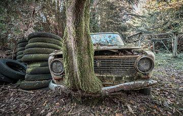 Lost in the woods van Cindy van Hartingsveldt