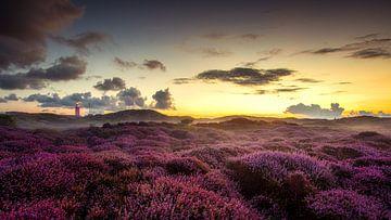 Sonnenaufgang auf Texel von Rob Sprenger