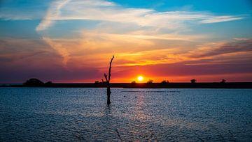 Letzte Sonne von Jan Peter Nagel