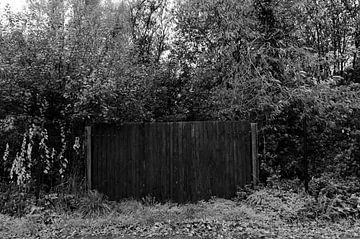 Schwarzes Tor in der Mitte des Waldes. von Kim De Sutter