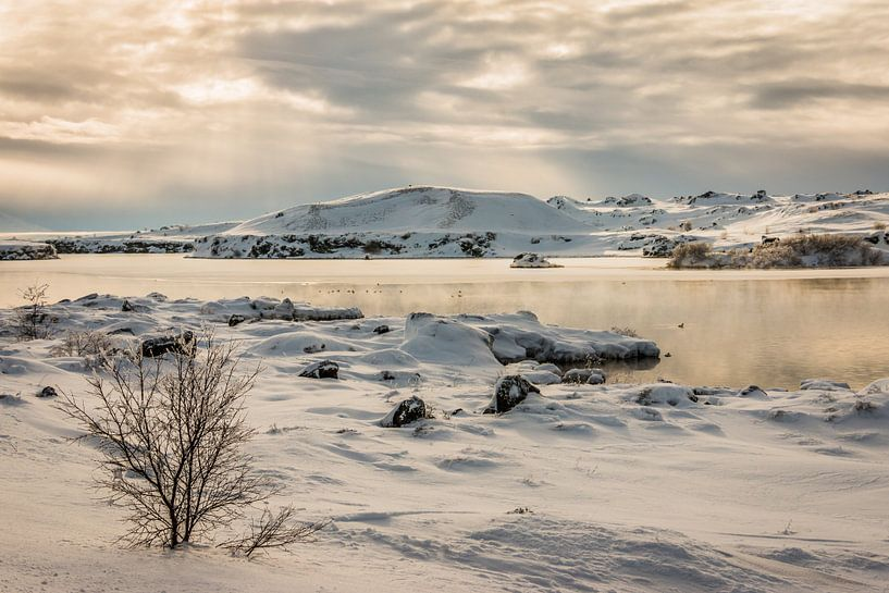 Myvatn - IJsland van Eefke Smets