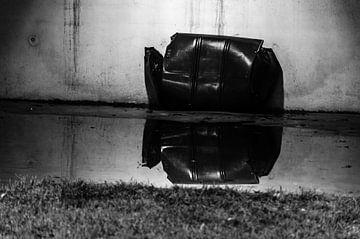 weerspiegeling van Eline Willekens