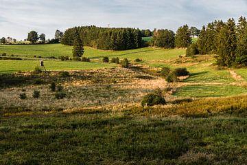 Hügel im Abendlicht von Werner Lerooy
