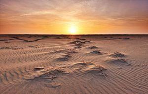 Strand Texel bij zonsondergang van