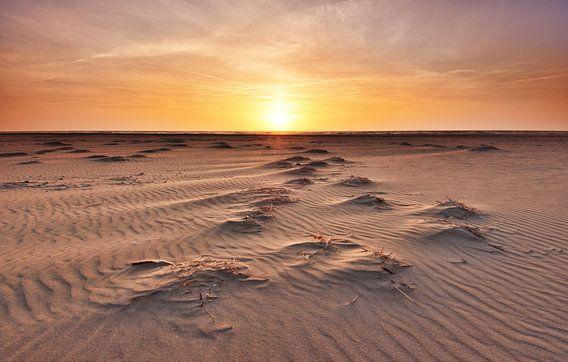 Strand Texel bij zonsondergang