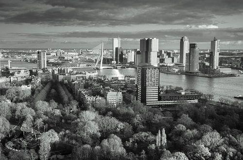 Skyline of Rotterdam in black & white