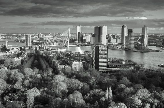 Skyline of Rotterdam in black & white van Ilya Korzelius