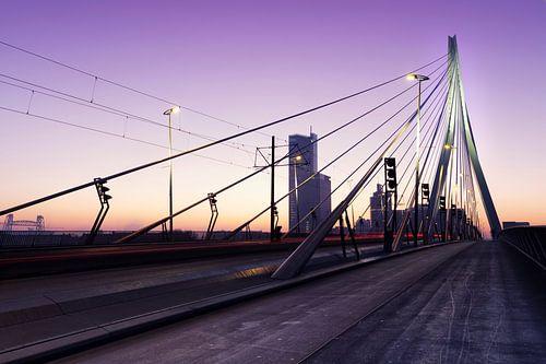 Erasmusbrug Rotterdam Zonsopkomst