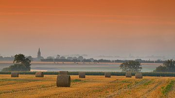 Boerlandschap von