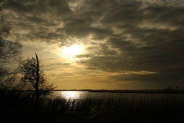 Blick über das Sneekermeer von Pim van der Horst