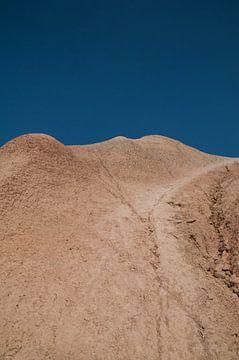 Woestijn von Lieke Roodbol