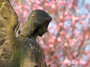 Engel in het voorjaar von Edwin Butter