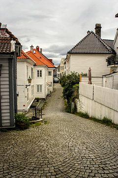 Straat van Bergen, Noorwegen van Remco de Zwijger
