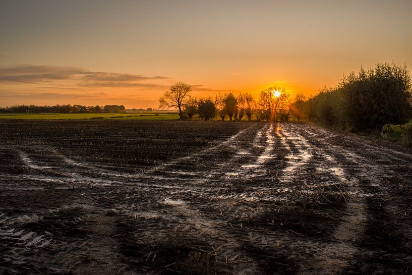 Farmers Dream van Tony Buijse