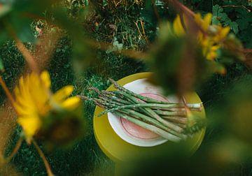 Spargel in der Natur von Lisanne Koopmans