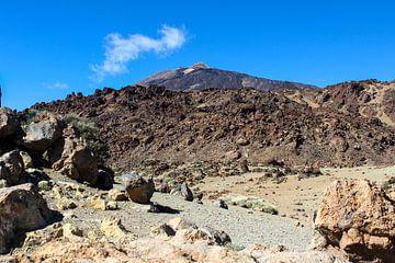 Vulkaanlandschap in het Teide National Park op Tenerife van Reiner Conrad