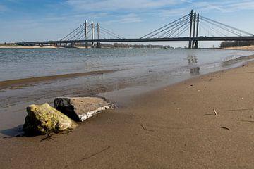 Ewijk 24-03-2012. Die Tacitusbrücke ist eine neue Schrägseilbrücke, die neben der alten Brücke in Ew von Ger Loeffen