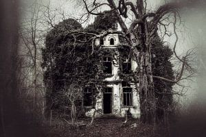 Beautyful Decay