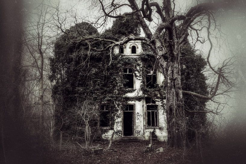 Beautyful Decay von n.Thi Photographie