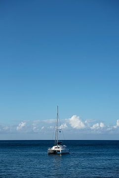 Catamaran op zee van Margot van den Berg