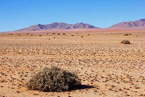 Panorama woestijnlandschap, Namibië  van