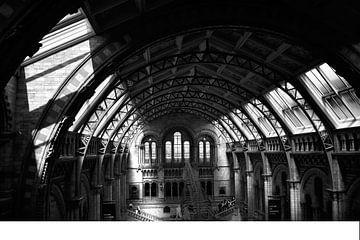National History Museum London photo noir et blanc sur Mireille Schipper