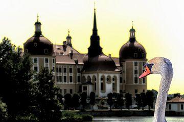 Moritzburg van Christine Nöhmeier