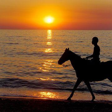 Paard bij ondergaande zon van Karin Keesmaat Kijk-Kunst