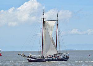 Le navire de la flotte brune Flying Dragon sur Piet Kooistra