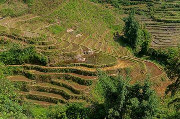 Vietnam: Omgeving Sa Pa (Sa Pa) van Maarten Verhees