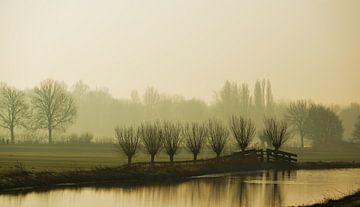ochtendmist in polderlandschap van Georges Hoeberechts