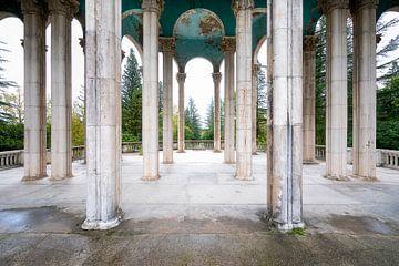 Säulenhimmel. von Roman Robroek