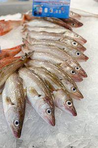 Verse vis op de markt