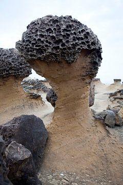 Yehliu Geopark: enkele voorbeelden van rots-erosie, Taiwan van Kees van Dun