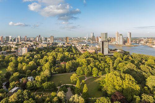 Het schitterende stadspark van Rotterdam vanaf de Euromast
