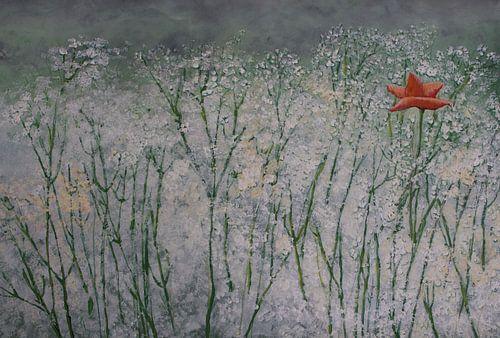 Eine unter vielen... von Susanne A. Pasquay