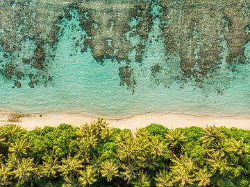 De zee en het palmen strand - Paradijs von Manon van Goethem